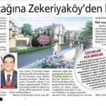 04-06-2013-milliyet